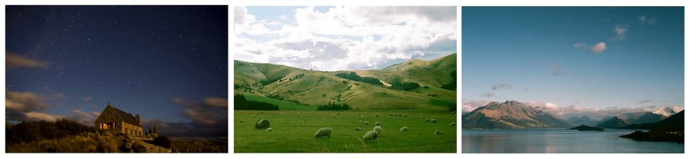 NZ_190309_0003